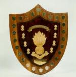 Major-General John Peter Mackenzie Trophy