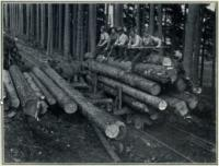 Railing logs in Scotland