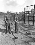 Posed mine clearance photo - UNEF