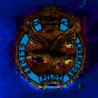 Glider Pilot Regt badge