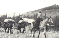 Royal Engineer Surveyors on the Cariboo Trail