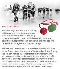 Juno Beach Centre Dog Tags