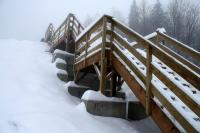 Se dressant en plein cœur de la nature, à quelques mètres du sommet du mont Brillant, l'escalier du 5 RGC est une belle réalisation.